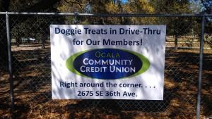 03-04-2013 Dog Park Banner #2