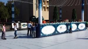 12-2014 OCCU Sponsors Skate Ocala (1)