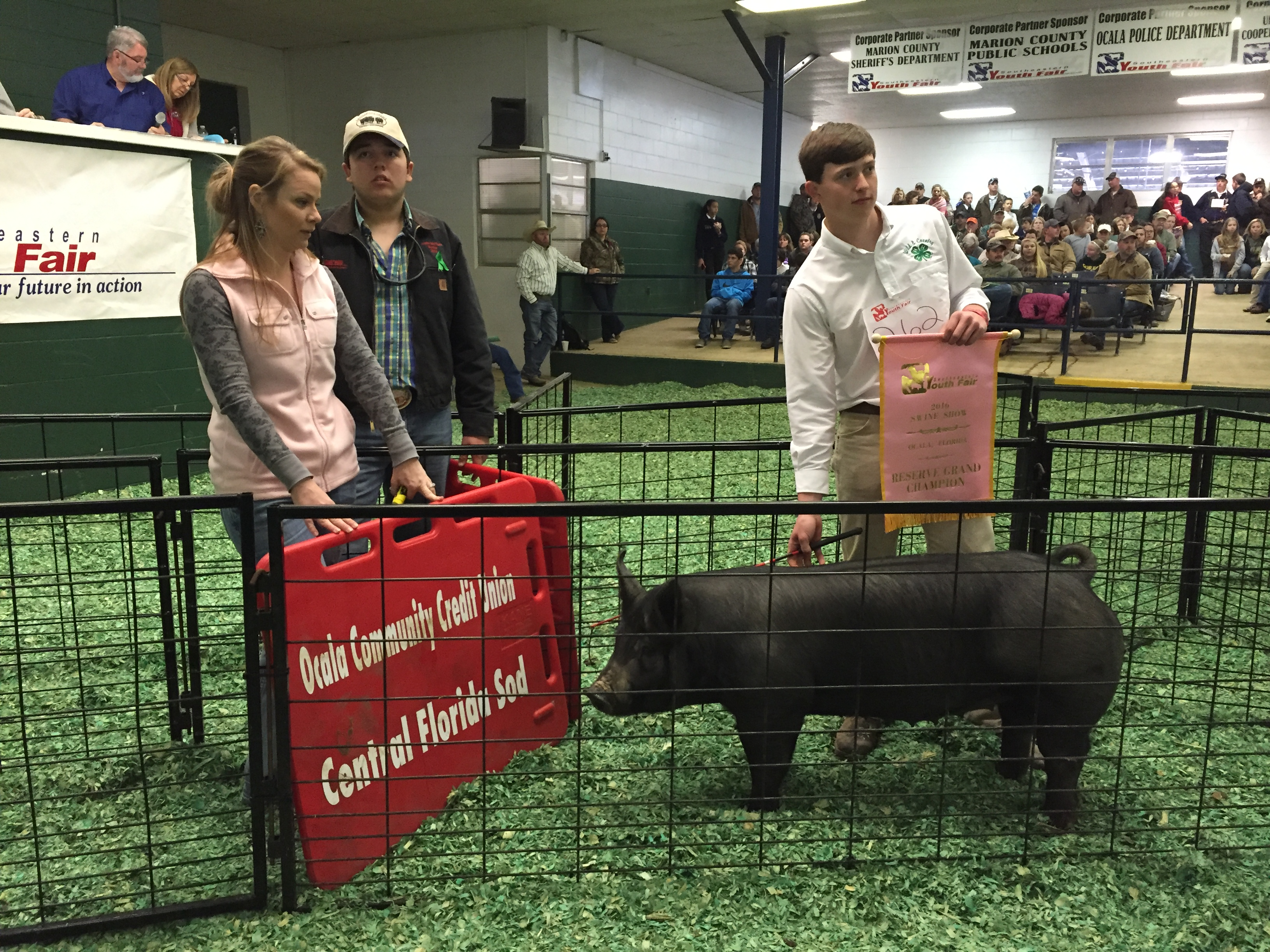 02-27-2016 Swine Auction