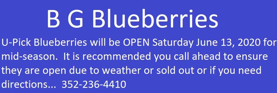 B G Blueberries - Call 352-236-4410