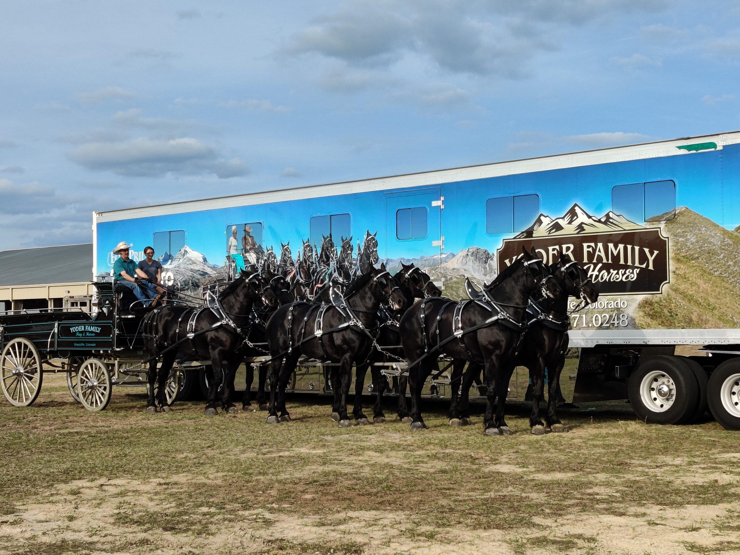 01-30-2021 Yoder Family - Florida Horse Park