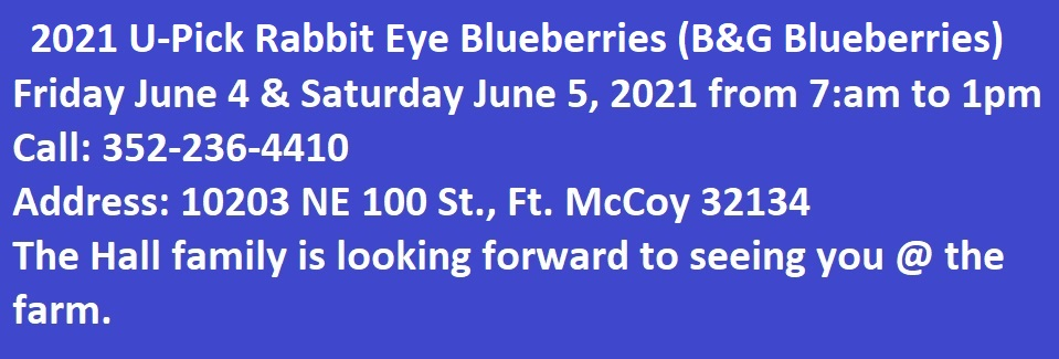 06-01-2021 U-Pick Blueberries